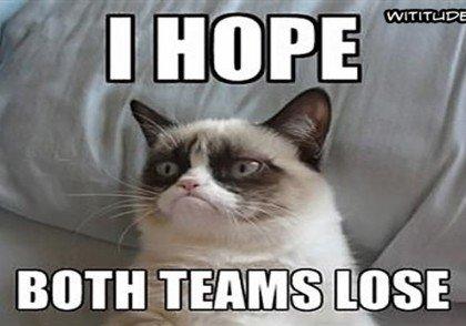 funny-superbowl-meme-cat