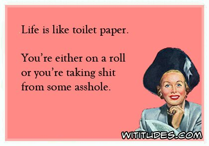 life-like-toilet-paper-either-roll-or-taking-shit-some-asshole-ecard