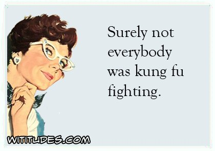 surely-not-everybody-was-kung-fu-fighting--ecard