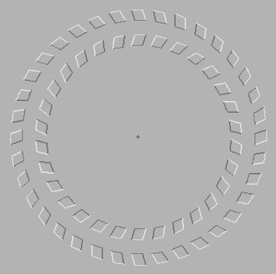 look at gray dot in the center for 5 seconds and then move head forward and backward and see it spin