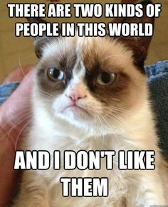 Grumpy Cat - There are two kinds of people meme