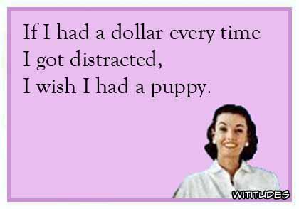 If I had a dollar every time I got distracted, I wish I had a puppy ecard