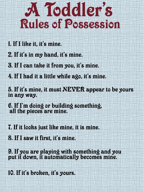 A toddler's rules of possession list