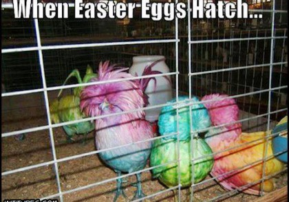 when_easter_eggs_hatch