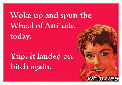 woke up and spun the wheel of attitude today yup it landed on bitch again ecard